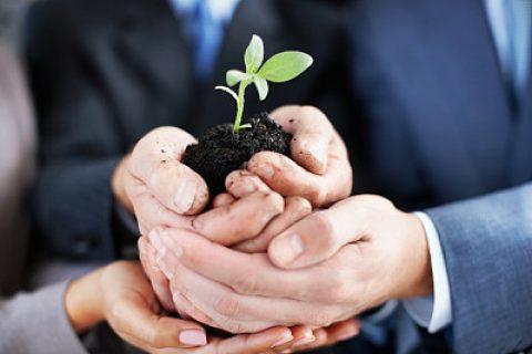 关于自贸试验区内外商投资广告企业备案要求